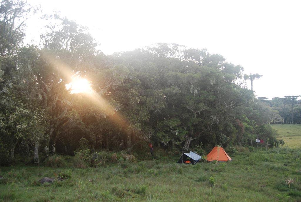 barraca arvores sol camping