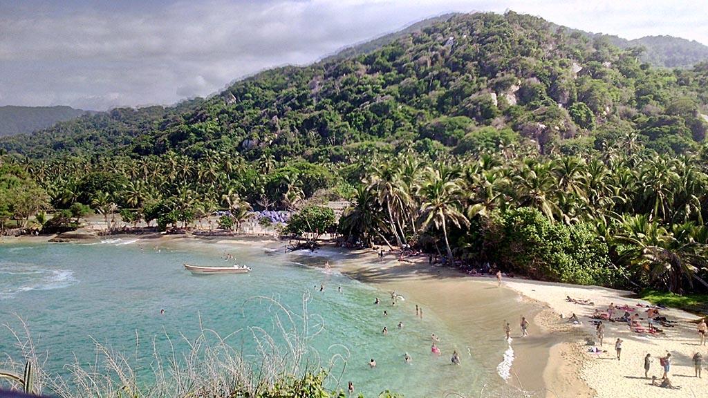 praia mar arvores