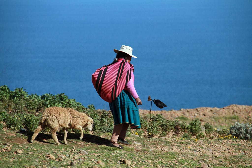 mulher lago ovelha