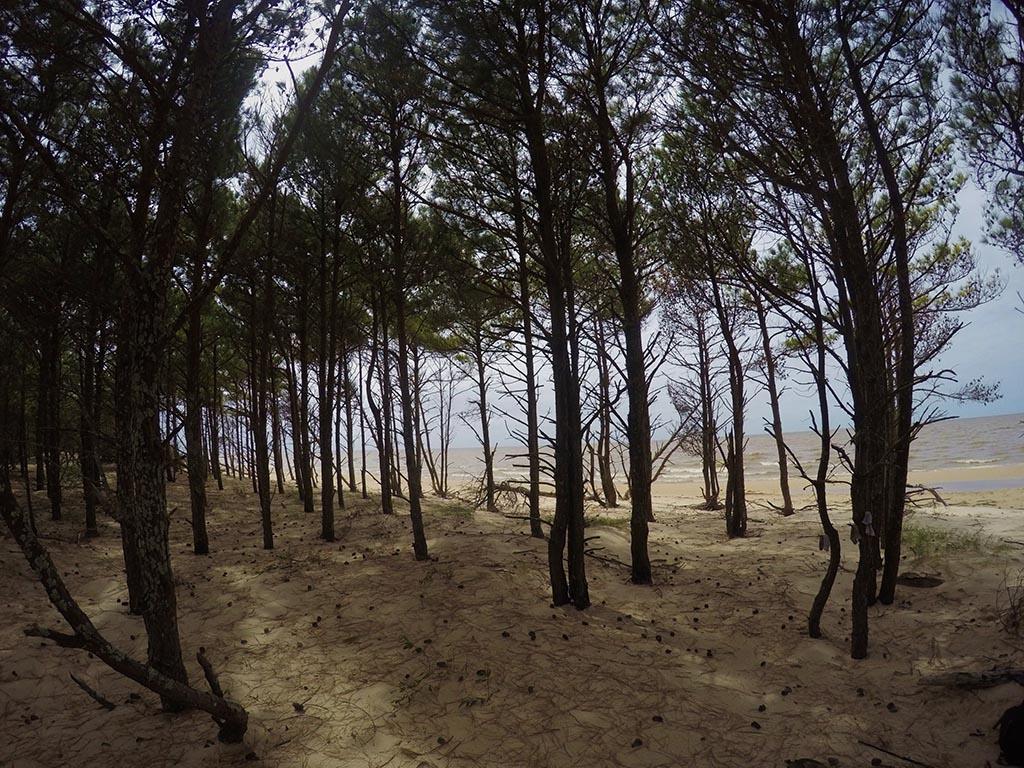 praia lagoa dos patos