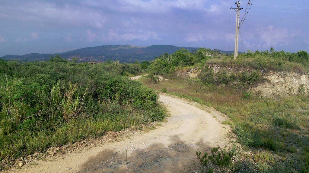 estrada natureza