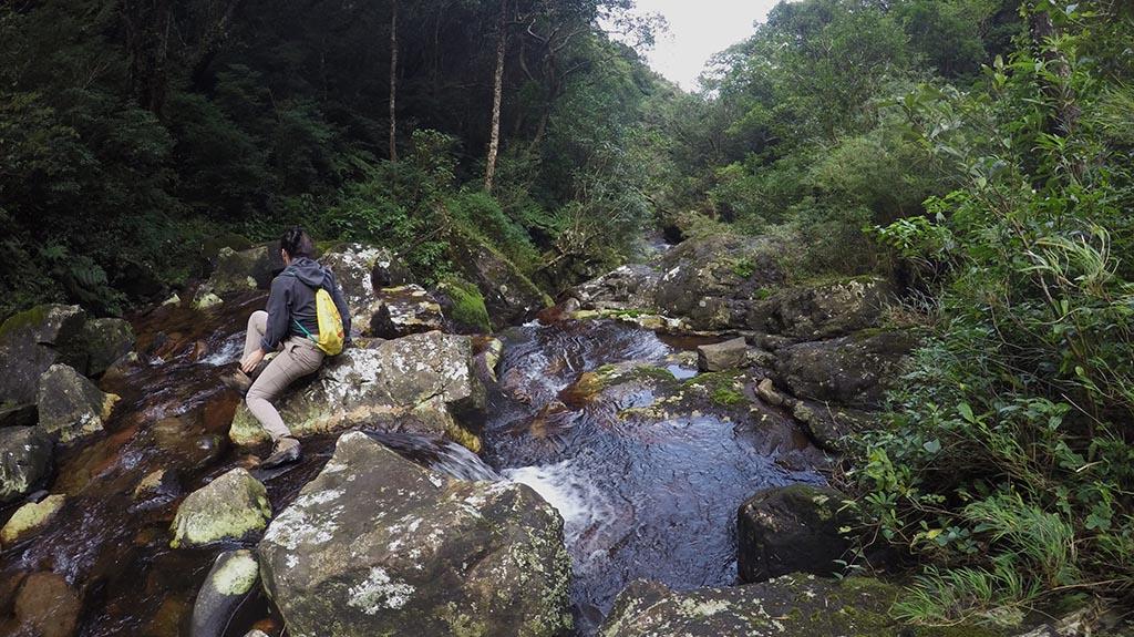 rio sinos nascente trilha