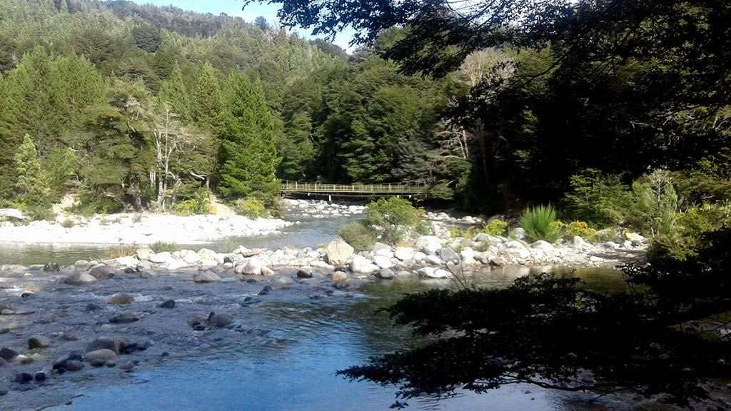 rio ponte natureza