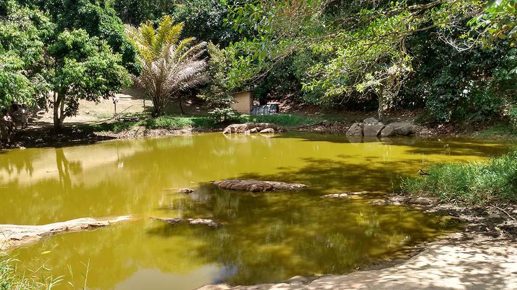 lagoa encantada quilombo palmares